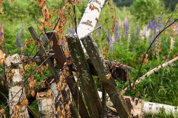 Fond rustique - une clôture détruite dans un jardin abandonné à la périphérie