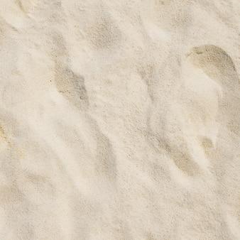 Fond de sable de corail