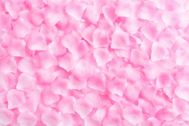 Fond de saint valentin, pétales de roses roses sur fond en bois.