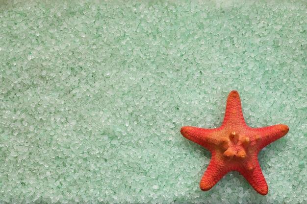 Fond avec sel de mer vert menthe et étoile de mer rouge