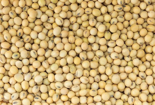Fond de soja