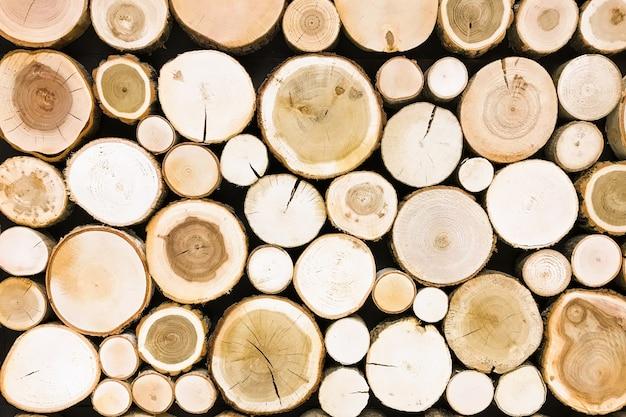 Fond de souche de bois rond en teck. arbres coupés texture de section