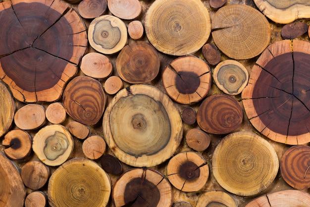 Fond de souches en bois rond