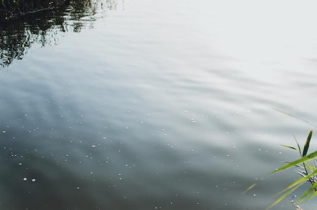 Fond de surface de l'eau en plein air. gros plan paysage mer, lac, étang avec mousse. toile de fond naturelle, pas de personnes