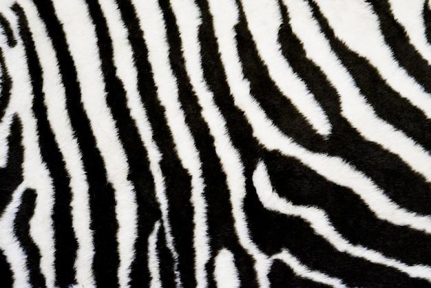 Fond de tapis de texture de zèbre. empreinte d'animal