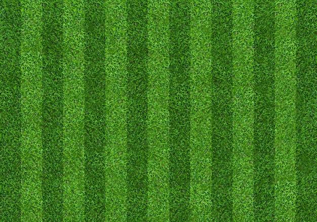 Fond de terrain d'herbe verte pour les sports de football et de football