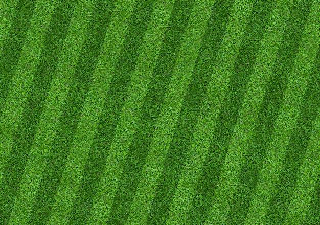 Fond de terrain d'herbe verte pour les sports de football et de football.