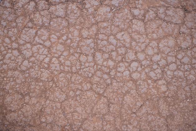 Fond de terre fissurée, texture du désert d'argile