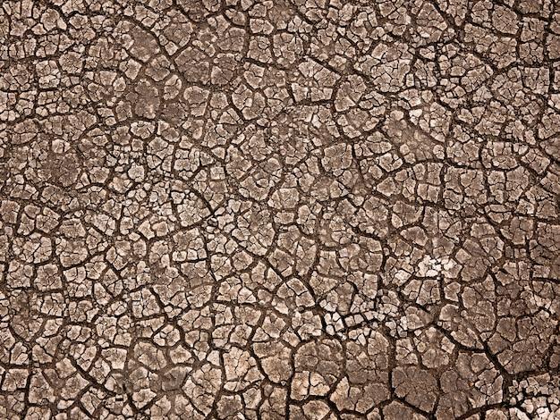 Fond de terre de terre fissurée