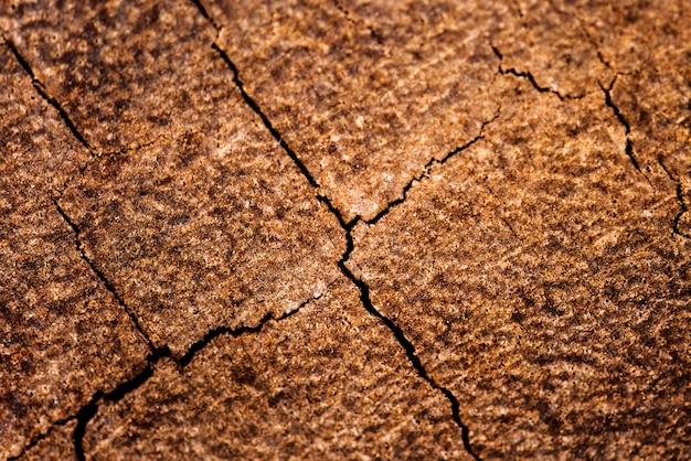 Fond texturé en béton fissuré