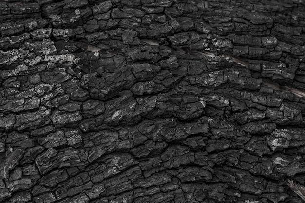 Fond de texture en bois brûlé