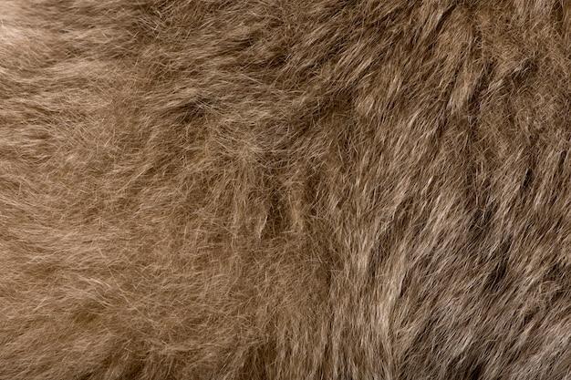 Fond de texture de cheveux de singe