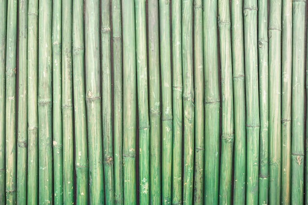 Fond de texture de clôture en bambou vert,