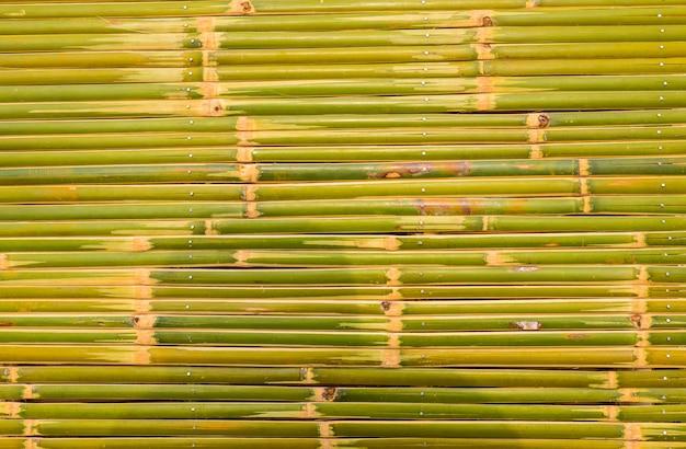 Fond et texture de clôture de bambou