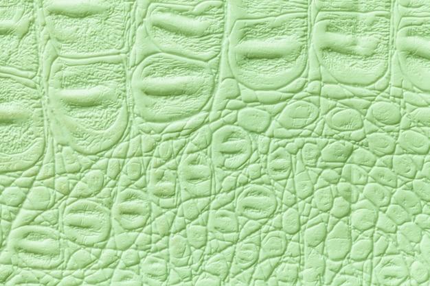 Fond de texture de cuir vert clair, gros plan. peau de reptile, macro.