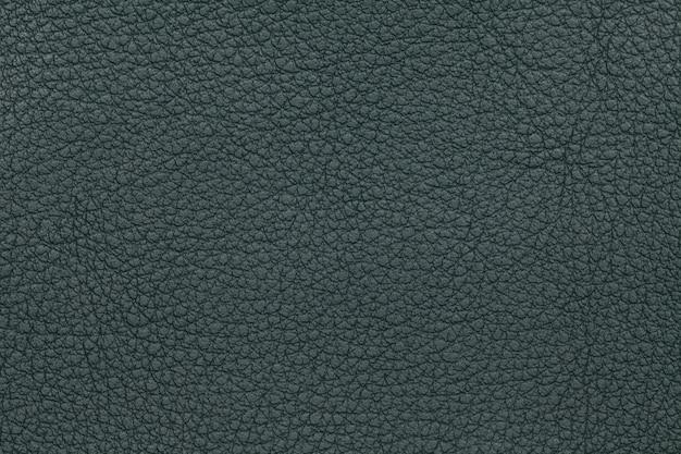 Fond de texture de cuir vert. photo gros plan.