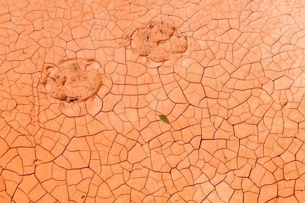 Fond de texture du sol de sécheresse orange avec des étapes de chat