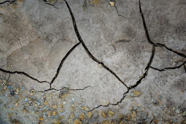 Fond de texture du sol terre fissurée séchée. mosaïque de terre séchée ensoleillée