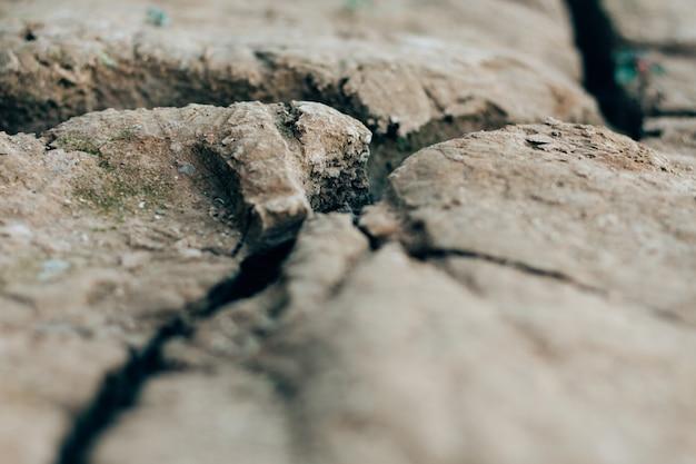 Fond de texture du sol terre fissurée séchée.