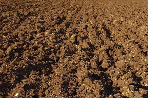 Fond de texture du sol