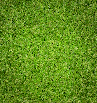 Fond de texture d'herbe verte.