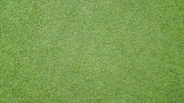 Fond de texture d'herbe