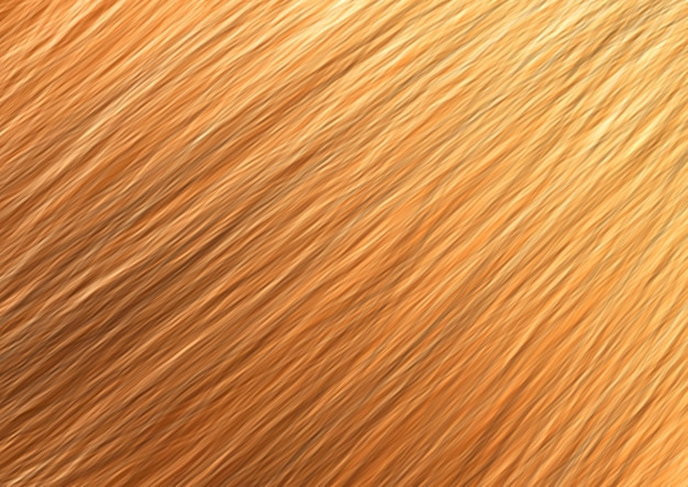 Fond de texture marron en bois