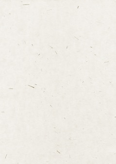 Fond de texture de papier recyclé naturel