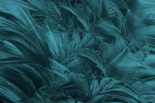 Fond de texture de plume bleue