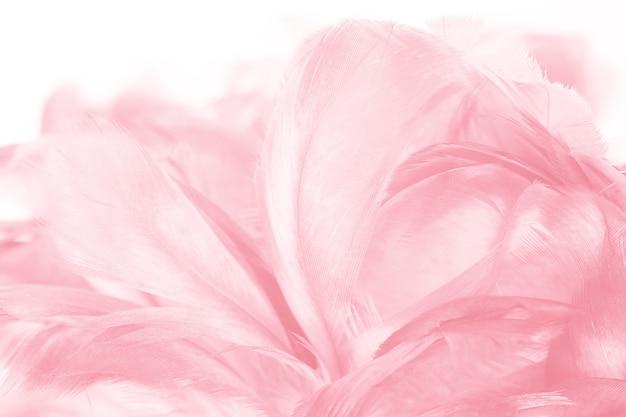 Fond de texture plume rose