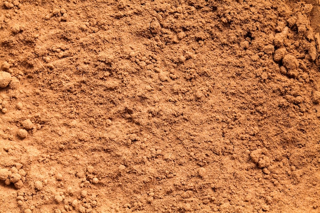 Fond de texture de poudre de cacao