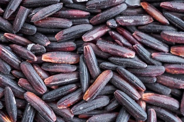 Fond de texture de riz aux baies de riz biologique cru
