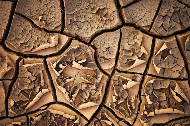 Fond de texture de sol de terre fissurée séchée. motif en mosaïque de terre sèche ensoleillée