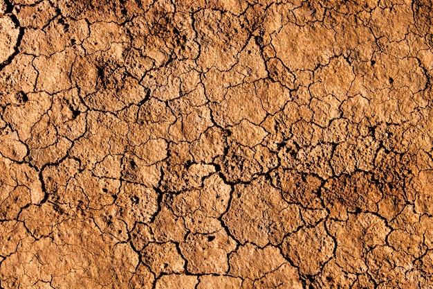Fond et texture de la terre sèche craquelée