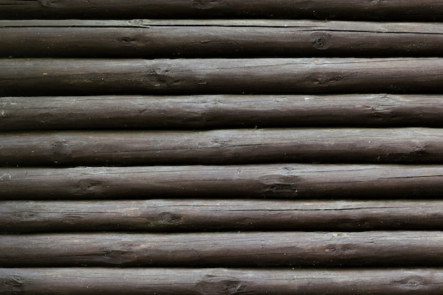 Fond de texture de troncs d'arbres en bois