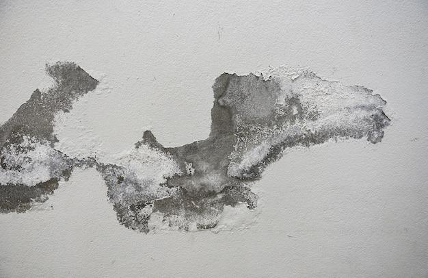 Fond de texture de vieux mur vide, surface de mur en détresse peinte, façade de bâtiment minable grunge avec du plâtre endommagé, couleur fissurée causée par le mur qui s'écaille à l'humidité
