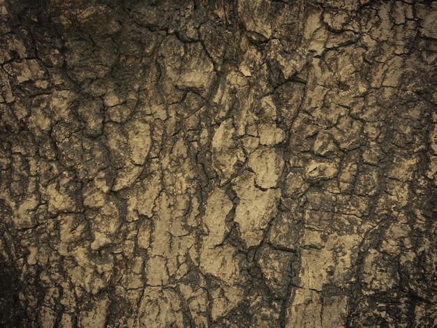 Fond de texture vintage, rétro en bois brun