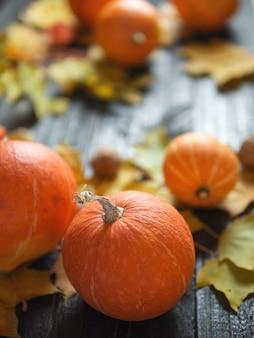 Fond de thanksgiving, citrouilles orange et feuilles d'automne sur un fond en bois foncé