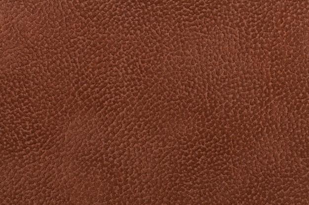Fond de tissu marron foncé décoré avec un manteau animal.