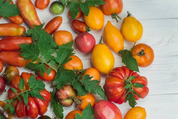 Fond de tomates colorées