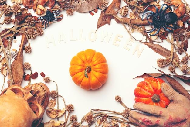 Fond de vacances halloween, citrouilles fraîches, art, artisanat, espace pour le texte