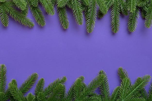 Fond de vacances de noël avec espace de copie pour le texte publicitaire. branches de sapin sur fond de couleur. mise à plat, vue de dessus