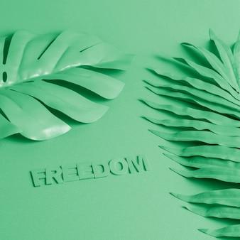 Fond vert avec des feuilles de palmier