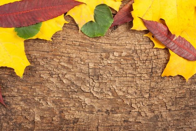 Fond de vieux bois fissuré