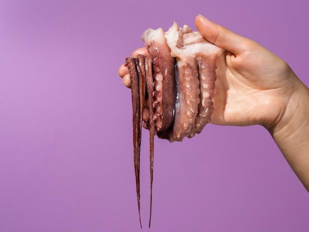 Fond violet avec une main tenant une pieuvre
