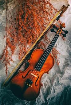 Fond de violon en bois et archet mis à côté du groupe de fleurs séchées