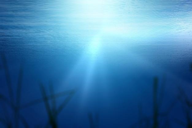 Fond de vue sous-marine