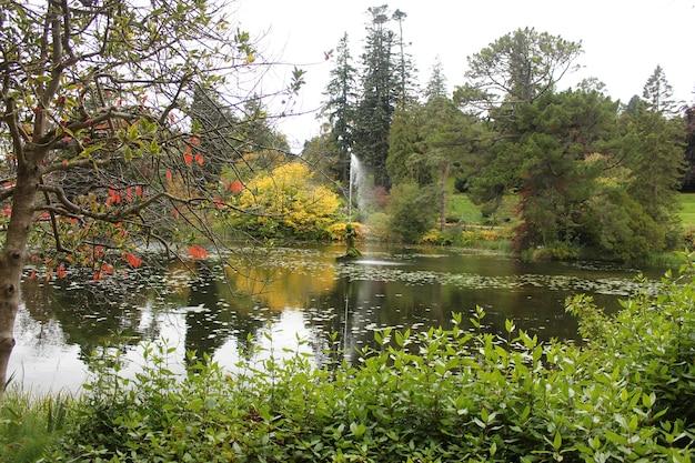 Fontaine dans le lac