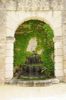 Fontaine avec l'eau qui sort de la gueule d'un lion avec une vigne vierge