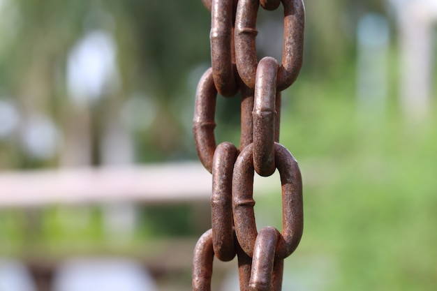 Force de la chaîne verticale abstraite pour le fond.
